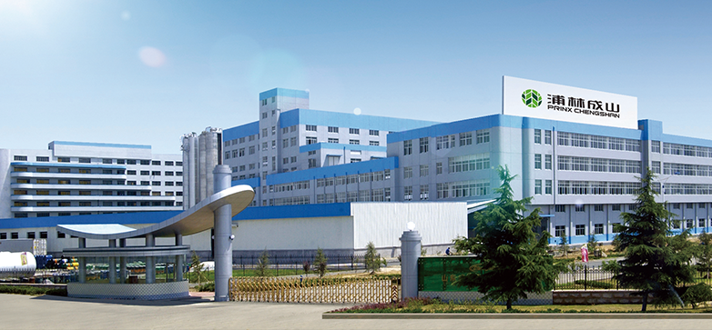 Prinx Chengshan (Shandong) Tire Company – Austone Tyre Factory